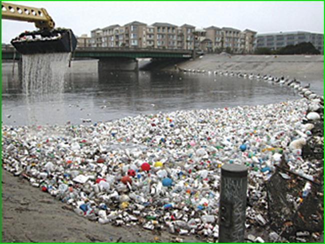 contaminacion-ambiental-efectos-seres-vivos_image008