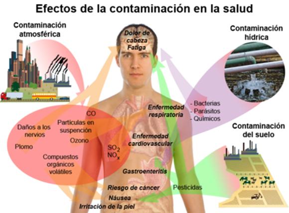 La contaminación afecta la salud de todos nosotros